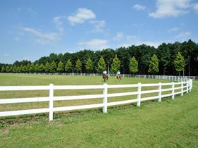 island horse resort nasu